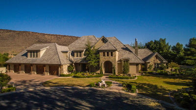 St George Single Family Home For Sale: 573 S Woodsview Cir