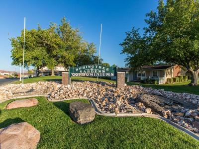 St George Multi Family Home For Sale