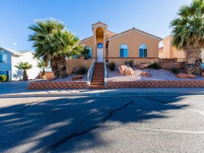 St George Single Family Home For Sale: 2366 E 40 N