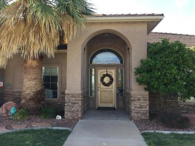 St George Single Family Home For Sale: 1595 W 1370 N