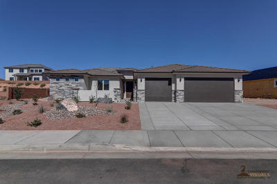 St George Single Family Home For Sale: 3419 E Rimrunner Dr