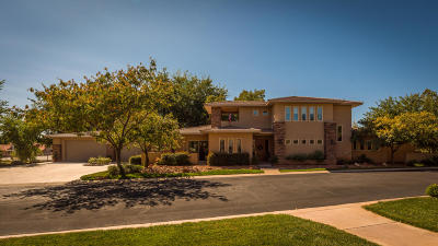 St George Single Family Home For Sale: 1571 W Woods View Ln