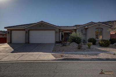 Washington Single Family Home For Sale: 1531 N Liberty Greens Dr