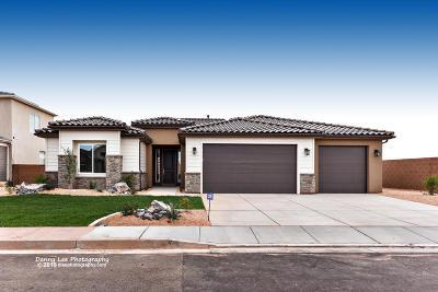 Washington Single Family Home For Sale: 410 E 3975 S
