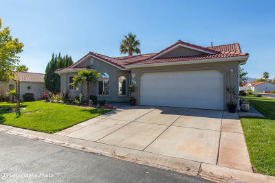 Ivins Single Family Home For Sale: 496 S Chula Vista Dr