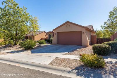 Washington Single Family Home For Sale: 1318 N High Cliffs Cir