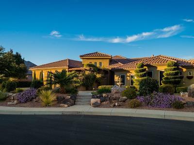 St George Single Family Home For Sale: 2435 E Bella Rosa Cir