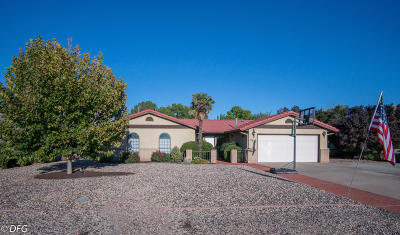 St George Single Family Home For Sale: 2941 Palmetto Cir
