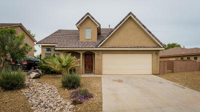 Washington Single Family Home For Sale: 1160 S Washington Fields #10