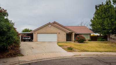 St George Single Family Home For Sale: 338 S Parkside Cir