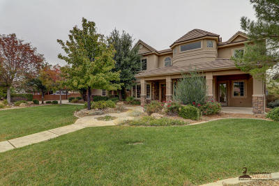 St George Single Family Home For Sale: 3251 S Three Bars Rd