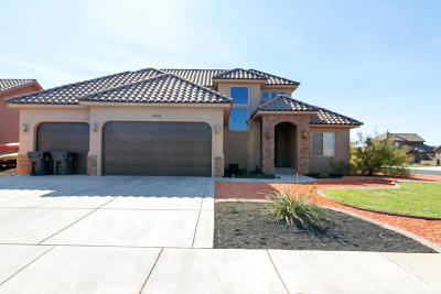 Dixie Springs Single Family Home For Sale: 4001 W 2470 S