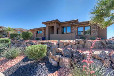 Washington Single Family Home For Sale: 568 Amiata Way