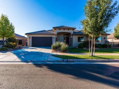 Washington Single Family Home For Sale: 198 E Fort Knox Way