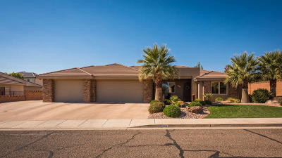 St George Single Family Home For Sale: 904 S Golda Dr