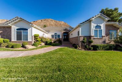Washington Single Family Home For Sale: 773 S Apache Cir