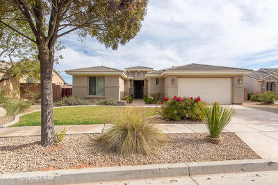 Washington Single Family Home For Sale: 1378 N Overland Trails Dr