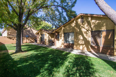 St George Multi Family Home For Sale: 510 S 1100 E