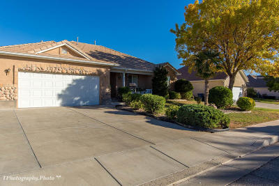 St George Single Family Home For Sale: 398 N 2480 E