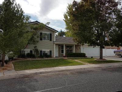 St George Single Family Home For Sale: 2418 E 390 N