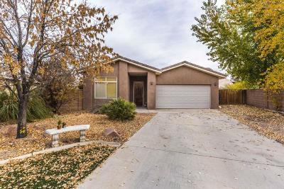 Washington Single Family Home For Sale: 1160 S Washington Fields Rd #35