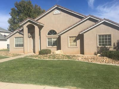 St George Single Family Home For Sale: 1091 S 500 E Cir