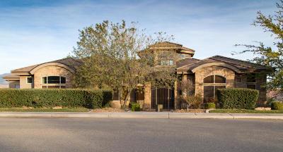 Hurricane Single Family Home For Sale: 2395 W 230 N