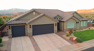 Washington Single Family Home For Sale: 1079 E 4430 S