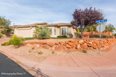 St George Single Family Home For Sale: 1568 N Sage