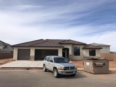 Washington Single Family Home For Sale: 3952 S Saddleback Rd
