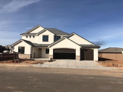 Washington Single Family Home For Sale: 3964 S Saddleback Rd