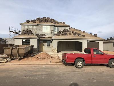 Washington Single Family Home For Sale: 3934 S Saddleback Rd