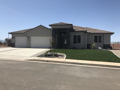 St George Single Family Home For Sale: 3836 S 2650 E