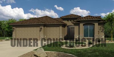 Washington County Single Family Home For Sale: 1436 W Grapevine Dr