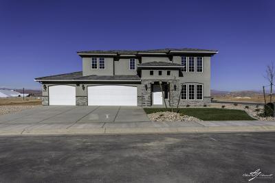 St George Single Family Home For Sale: 3261 E Livia Dr