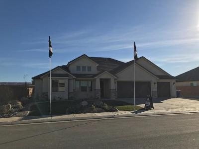 St George Single Family Home For Sale: 3185 S 3170 E