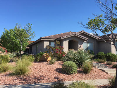 Washington Single Family Home For Sale: 3369 E Sweetwater Springs