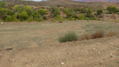 Santa Clara Residential Lots & Land For Sale: Lot 215 Colby Loop