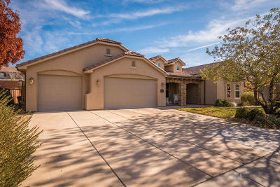 St George Single Family Home For Sale: 3427 S Munich Dr