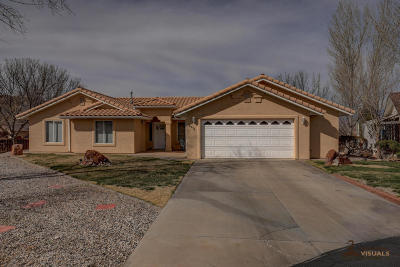 St George Single Family Home For Sale: 2974 E Pear Cir