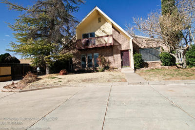 St George Single Family Home For Sale: 185 E 600 S