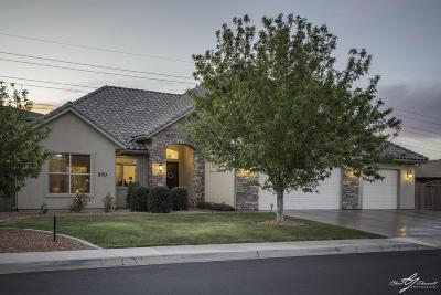 St George Single Family Home For Sale: 570 S Rainier