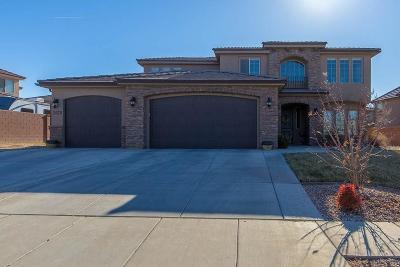 St George Single Family Home For Sale: 2878 E Crimson Ridge