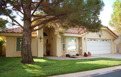 St George UT Single Family Home For Sale: $248,500