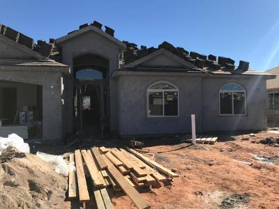 Hurricane Single Family Home For Sale: 2623 S 3600 W #Lot C-20
