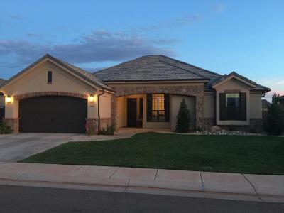 Washington Single Family Home For Sale: 996 E 4485 S