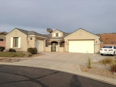 Washington Single Family Home For Sale: 2659 E Spring Canyon Dr