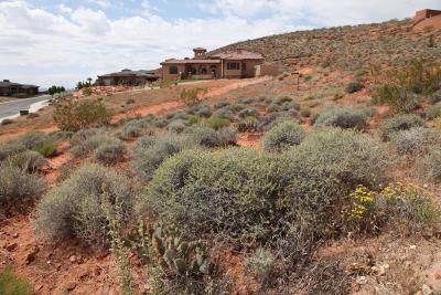 Washington Residential Lots & Land For Sale: 261 N Cliffside Dr