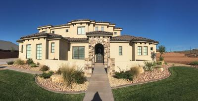 St George Single Family Home For Sale: 1331 S 2780 E