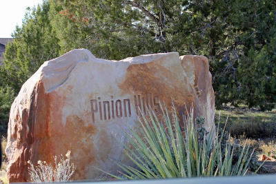 Dammeron Valley Single Family Home For Sale: 618 N Pinion Hills Dr